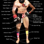 A while after this, someone else took the idea and made his own.  And it kicks ass, check it out:    https://www.mmaconvert.com/wp-content/uploads/post-images/perfect_mma_fighter.jpg